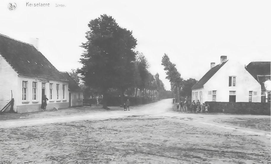 Sint-Jan Bentille Kerselaar (III-37)_1.j
