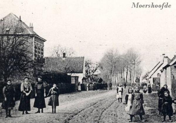 Sint-Laureins Moershoofde.jpg