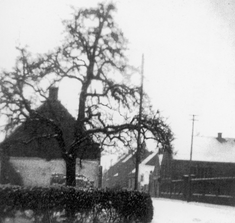 Sint-Laureins - hoek Kantijnstraat foto.