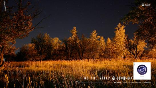 Cuando el sueño se esconde de ti - Cámara de Sueños: Zolpidem 1
