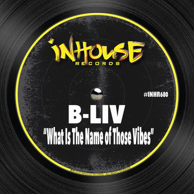 B-Liv - What is The name of Those Vibes