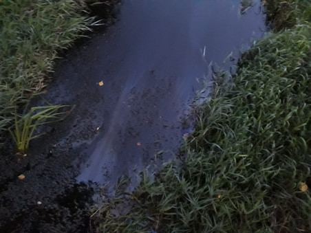 E35 - T1 Altach, Mühlgraben - Ölfilm auf Gewässer
