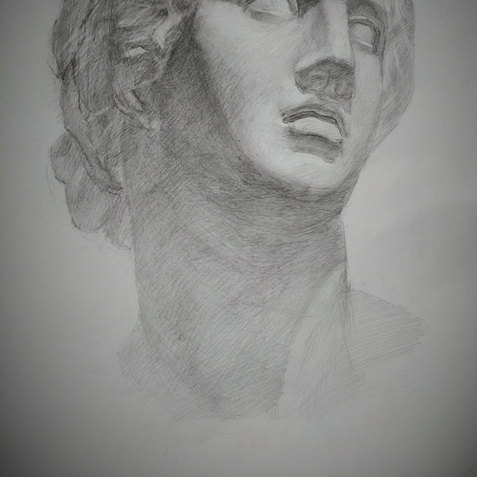 Светотеневой рисунок гипсовой головы_2.j