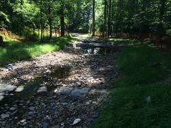 STA 17+50 - Upstream - Bike Crossing and Step Pools