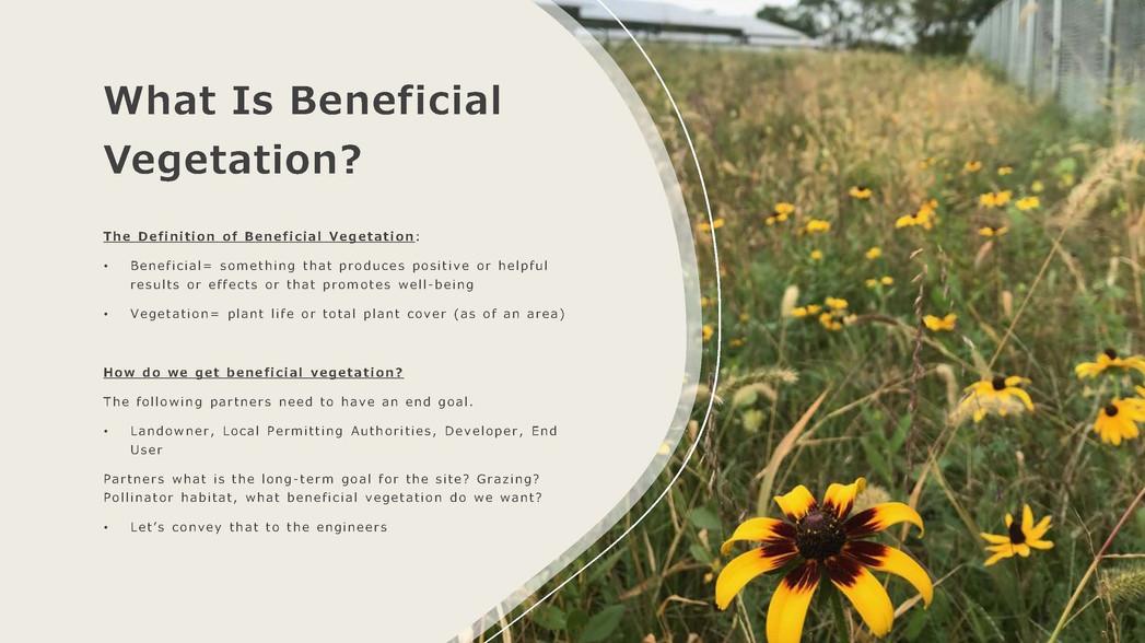 Introductory of Monarch Vegetation Servi