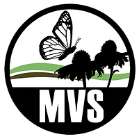MVS-Logo_edited.png