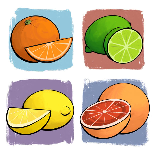 Fruit Sketches