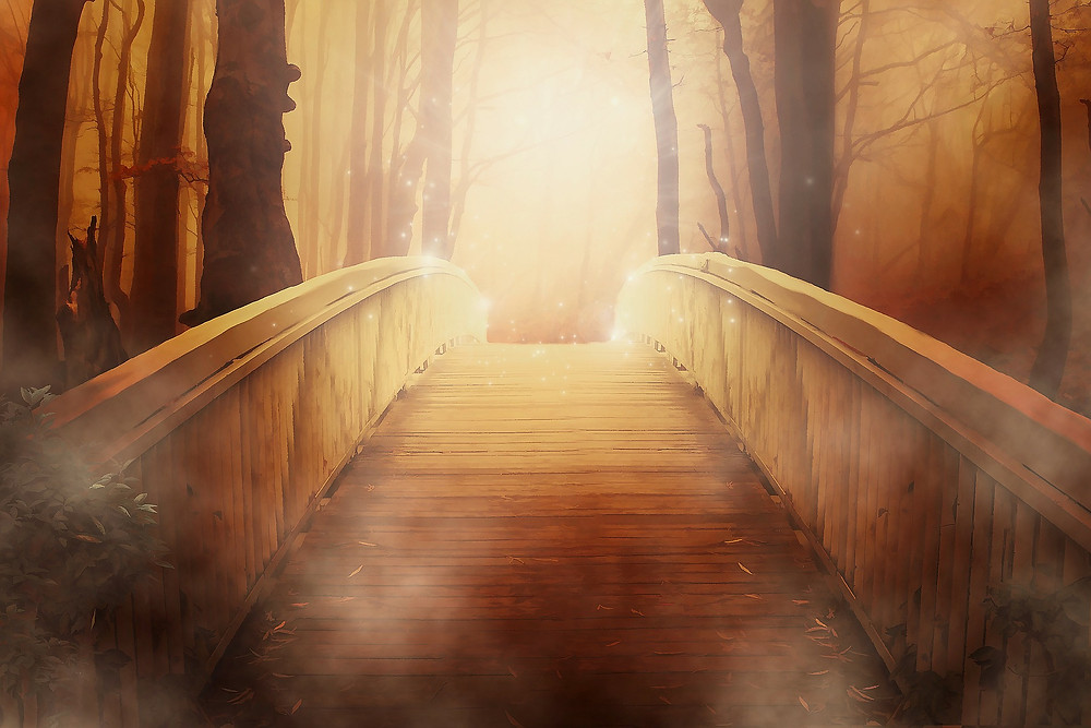 own path.jpg