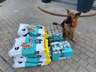 Młodzież na rzecz bezdomnych zwierząt w Sosnowicach!