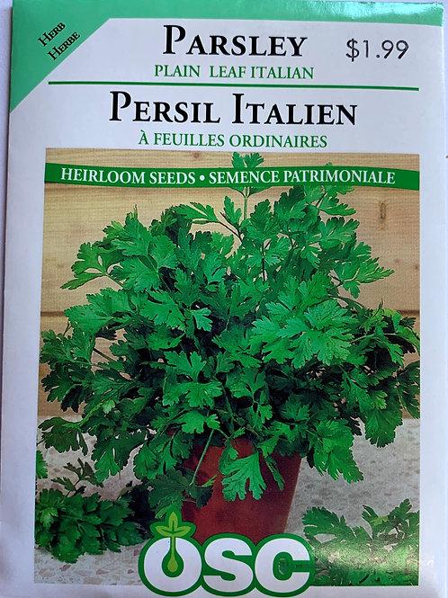 Persil italien