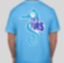 Aquatic Blue Back.png
