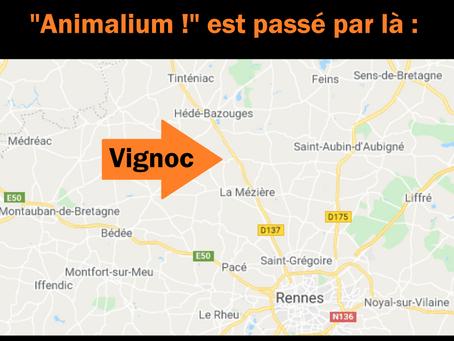 Visite à Vignoc (35)