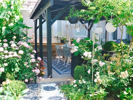 Värikkäät hortensiat