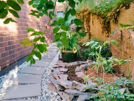 Polku johdattaa puutarhaan