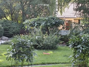 Sammaleen poisto nurmikosta
