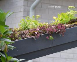 Rivin_Garden_Lifestyle_viherkatto_6_132.