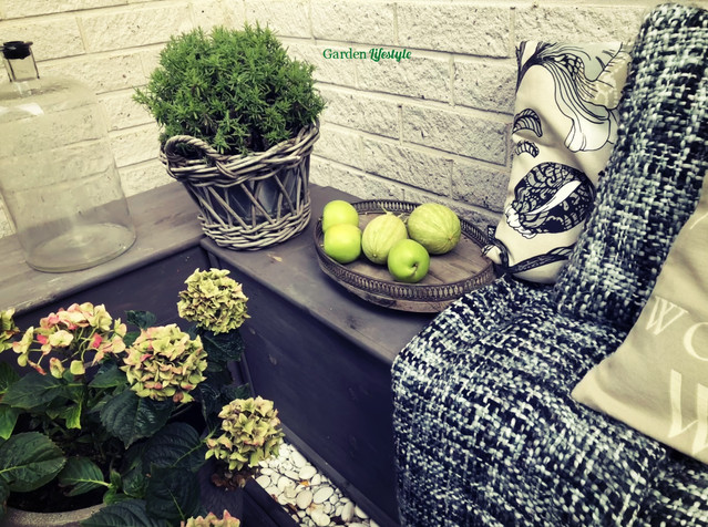 hortensija ja omenoita terassilla