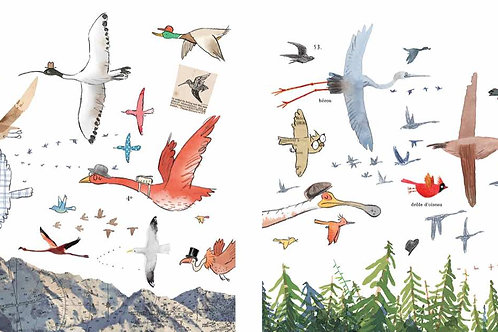 Birds fly north, birds fly south