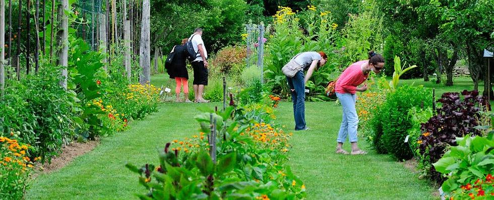 jardinerie-en-ligne