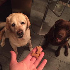 """My dogs love your treats!"" -Emilie Josephine"