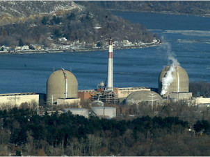 Dropping by the Millions: NRC Downgrades Indian Point Fish Kills
