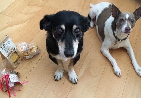 """""""Fi-Dough sends us treats every holiday because our mommy rescued Jake!""""  - Opie & Libby"""