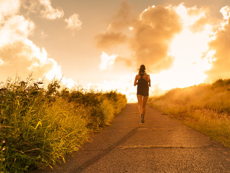 Motivation for Self-Renewal & Creativity