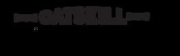 catskill ventures logo temporary.png