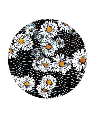 daisies round.png