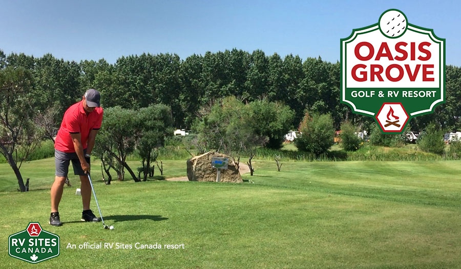 Oasis Grove Golf Amp Rv Resort Not Just Your Average