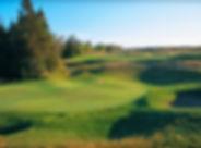 golf_course_Wolf_Creek_02_web.jpg