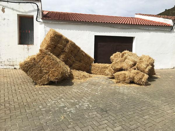 'houses of straw' Sanlúcar de Guadiana