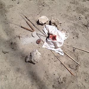 ww ashes, rag, reeds, shells, rocks