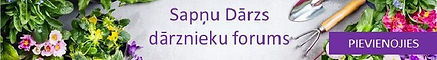 sapnu_darzs_galvenais baneris_edited.jpg
