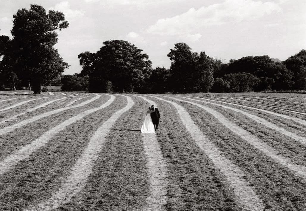 Bride, groom, field, wedding