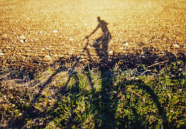 Man on bike, shadow