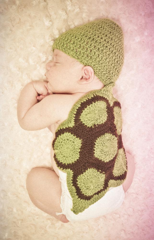 Cute Turtle!