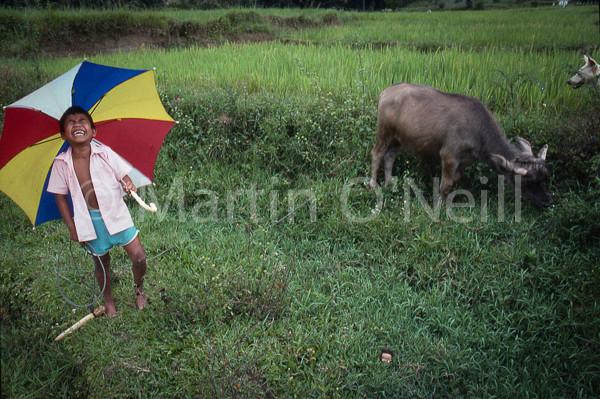 Minnie in Sumatra