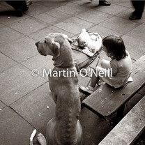 A young girl with a great dane and her toy doll