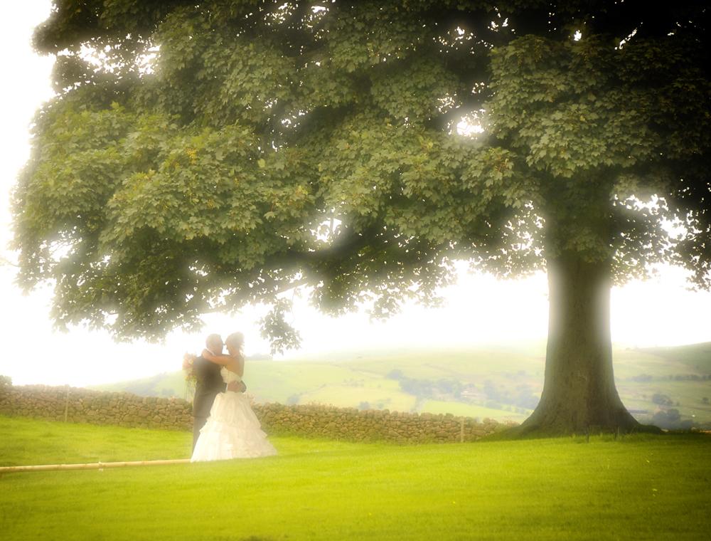 Bride, tree, Heaton House