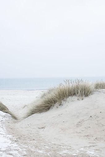 winter beach _vibecke66.jpg