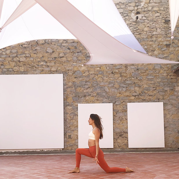 Ma demoiselle Pierre Arles yoga croisiere.JPG