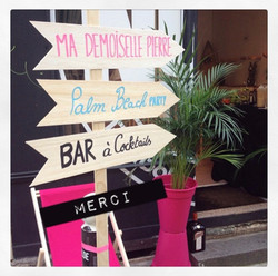 Palm Beach Party