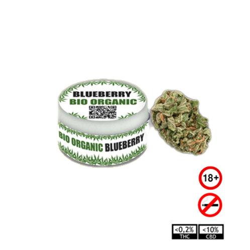 Blueberry 1gr