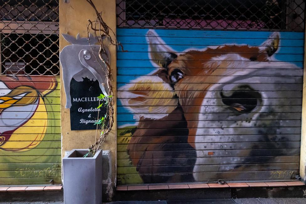 Graffiti advertising a butcher's shop in Bologna