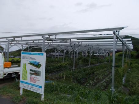「エコで儲かる農業」第5報!終日雨でも発電します!!
