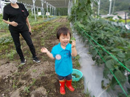 「エコで儲かる農業」第2報! 収穫体験実施に向けて・・!