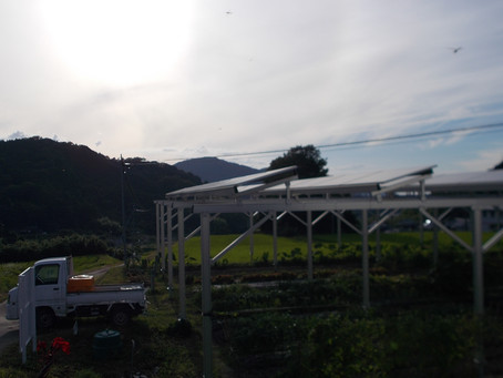 「エコで儲かる農業」第3報!