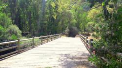 Puente sobre el río Omaña