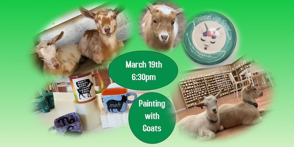 Pottery Painting with Goats 3/19